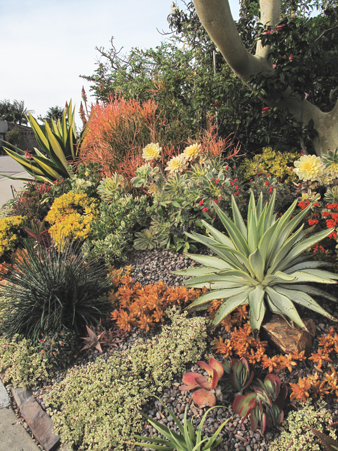 Pacific Horticulture Society Tours