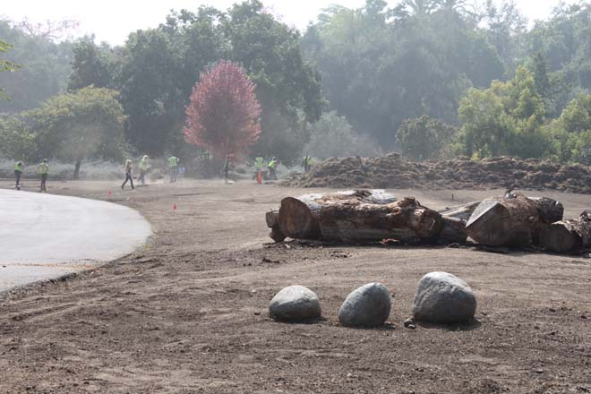 October 23, 2013: The first logs are placed as a foundation for the hügel demonstration. Photo: courtesy of Los Angeles County Arboretum