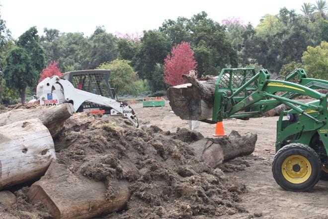 October 29, 2013: Hügelkultur construction continues with heavy equipment...