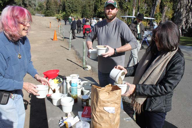 December 10, 2013: Planting day with (from left to right) Leigh Adams, Ted Tegart, and Nancy Yoshihara. Photo: courtesy of Los Angeles County Arboretum