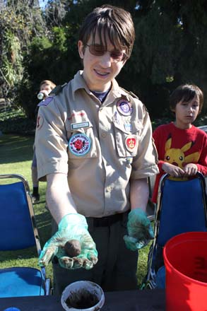 December 14, 2013: As part of his Eagle Scout project Ryan Holm, pictured here with Cub Scout Gavin Wright, helped create critical habitat for monarch butterfly caterpillars by forming and dispersing seed balls composed of milkweed (Asclepias) seed and mud. Photo: courtesy of Los Angeles County Arboretum