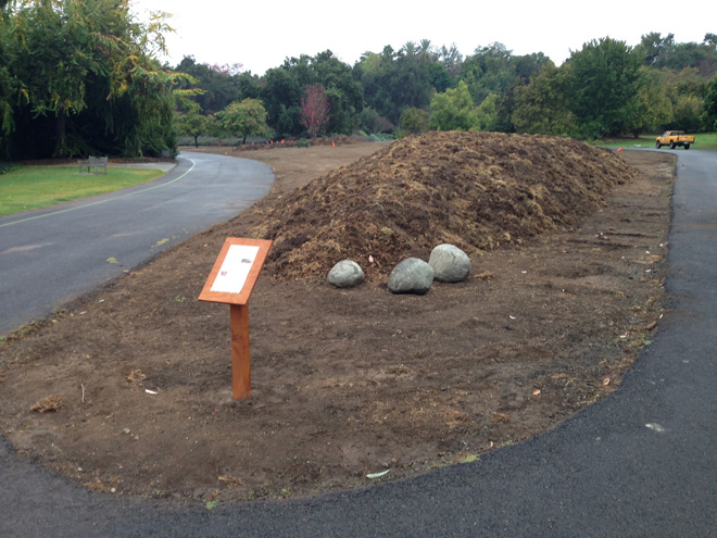 """November 4, 2013: Completed mounds and prepared site settle for a month as staff and volunteers create a barrier around the young garden and devise """"bird evasion strategies."""" Photo: courtesy of Los Angeles County Arboretum"""