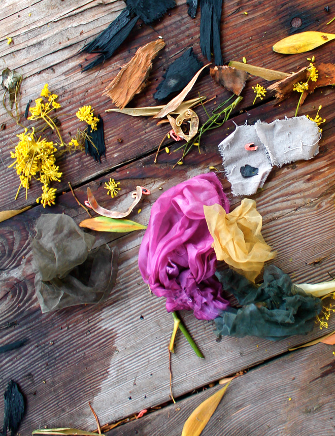 Weeds and waste from the garden create stunning colors to inspire a palette that nature provides, naturally. Photo: Sasha Duerr
