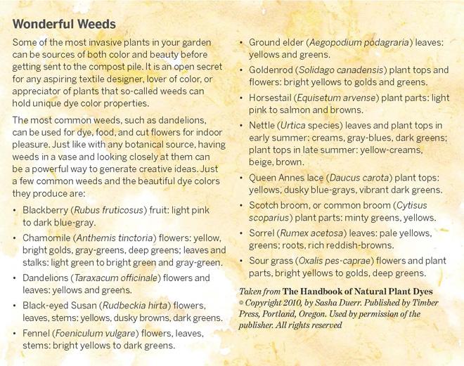 wonderful-weeds-copy