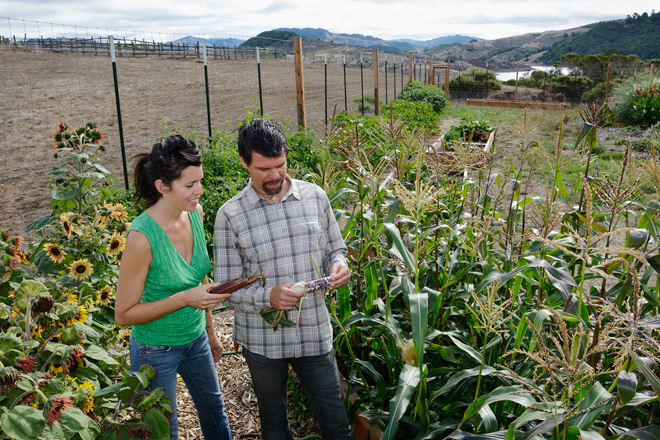 Matthew and Astrid inspecting the corn in their trial garden. Photo: Dan Hoffman Photography