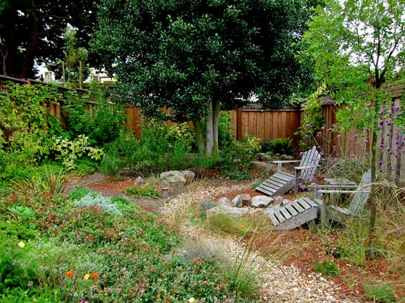 Mostly native plantings in this small sandy backyard near the beach in San Francisco provide songbird habitat with woody shrubs along the fence and a low open coastal meadowscape in the foreground.  Photo: Teresa Renee Norris