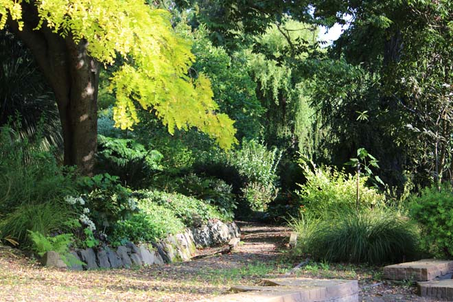 Near the entrance to Western Hills, a path invites visitors to explore the lower woodland garden.  Photo: Sue Duncan