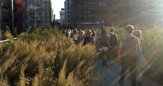 The High Line. Photo: Bob Hyland
