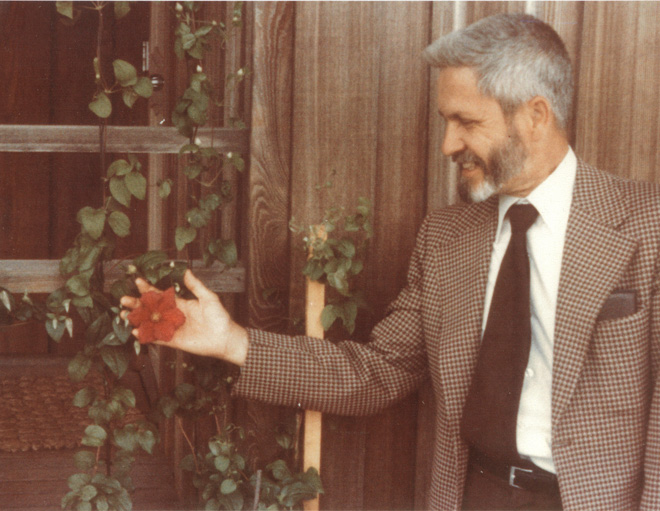 This is the first known picture of Brewster with clematis taken in 1975 in Manhattan, Kansas. The clematis is 'Rouge Cardinal'.  Photo: from the Rogerson Clematis Collection Archives.