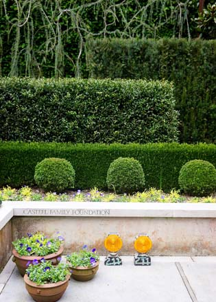 Various clipped evergreens anchor the garden. Photo: Daniel Mount