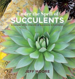 Succulent cover