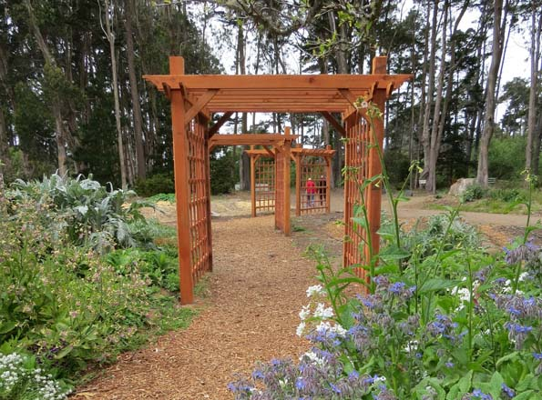 A series of arbors just installed this spring provide a grand entrance to the newly expanded garden. Photo: Elizabeth Petersen