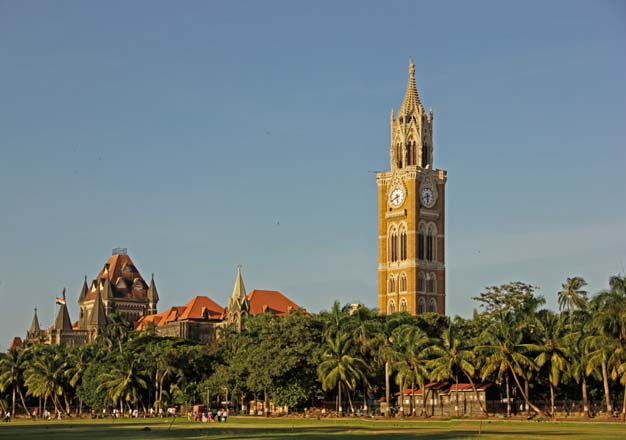 The Bombay High Court and iconic Rajabai Clock Tower are seen beyond the Oval Maidan grounds in front of the author's childhood home. The maidan is fringed mostly with coconut palm (Cocos nucifera) and royal palm (Roystonea regia). Photo: Kaizen Writer
