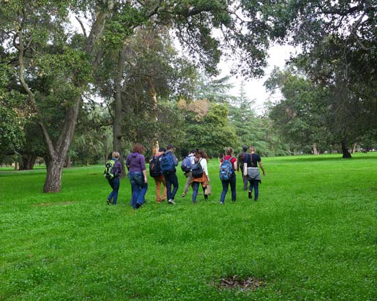 Led by Dave Muffly, students walk across the Arboretum at Stanford examining old and young oak trees.  Photo: Devaki Bhaya