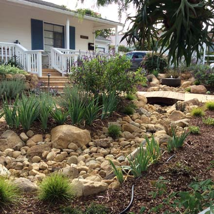 A dry creek bed in this front garden is a strong design element as well as a means of channeling seasonal rain and recharging the soil. Design by Joan Bolton. Photo: Marilee Kulhman