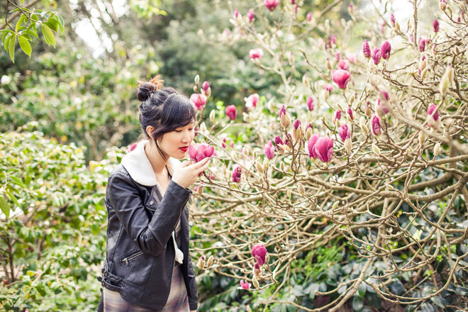 Don't miss the blooming magnolias at San Francisco Botanical Garden. It's a seasonal spectacle.  Photo: Kathryn Rummel