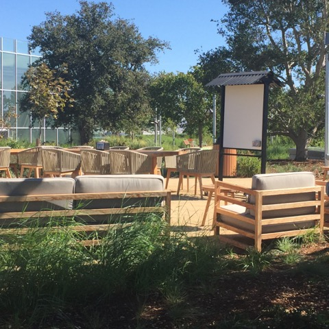 Whiteboards may not be a typical component of most landscapes but in the Facebook garden they are placed to capture notes from rooftop brainstorming sessions.  Photo: Carol Moholt