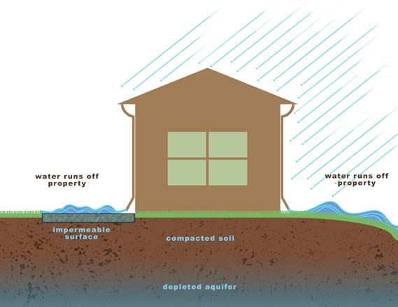 Before: a residential property without regard for watershed concerns.  Illustration: Alex Stevens