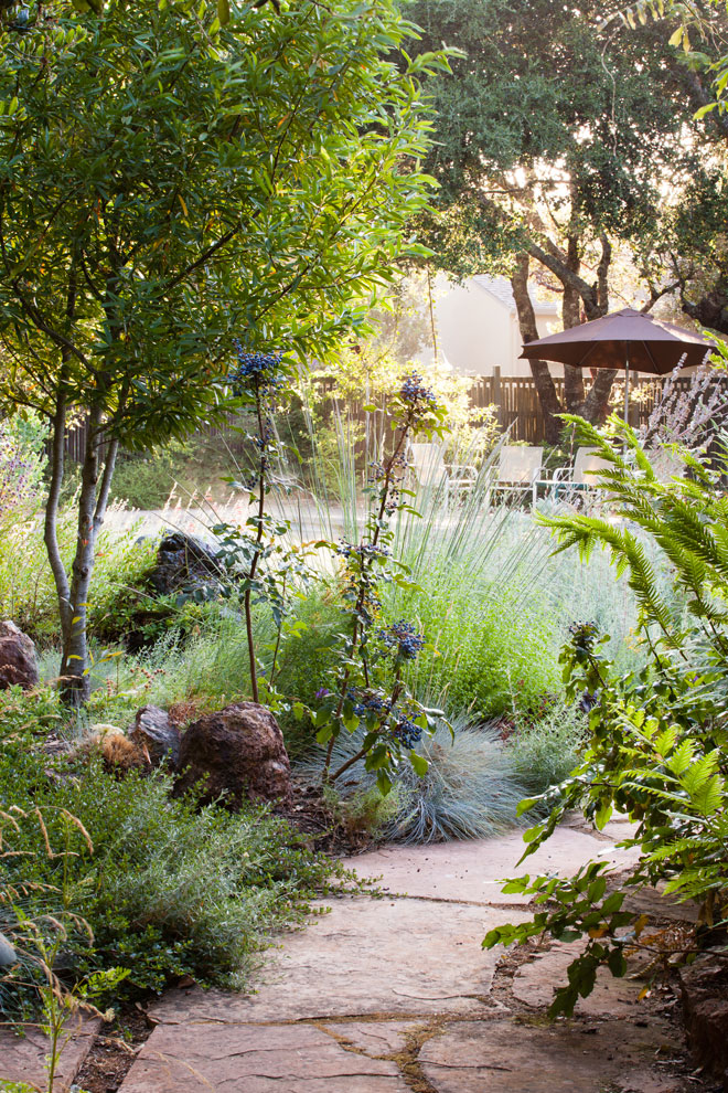 The Melissa Garden, Healdsburg, California. Photo: Saxon Holt