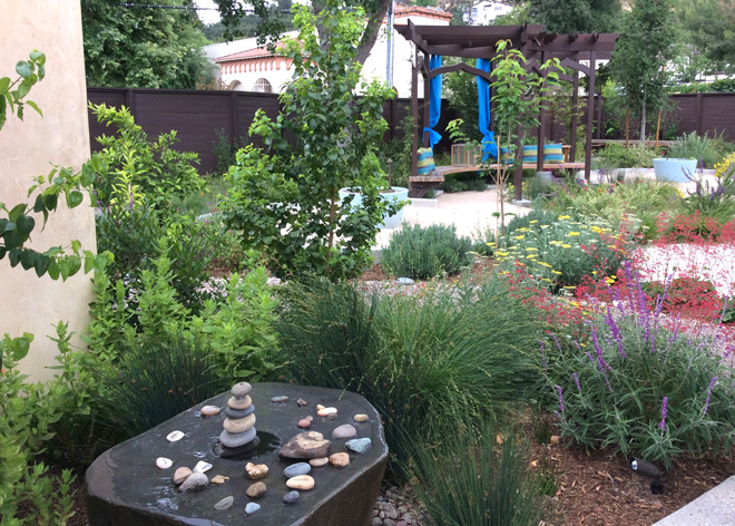 This garden at the Bee Hive of Healing Center in Agoura Hills was once a parking lot. Compost tea is applied twice a year to restore the soil biology.  Garden design and photo: Marilee Kuhlmann