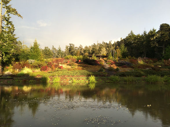 Surrounded by the native forest Frog Song Farm flourishes above a pond on the 30-acre property. Photo: Sandy Scott