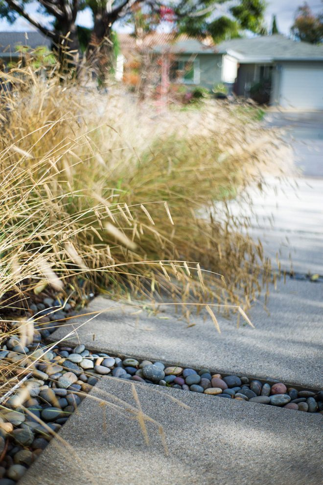 Low water use native grasses and permeable hardscape elements are key components in a California-friendly landscape. Photo: Philip Otto Photography