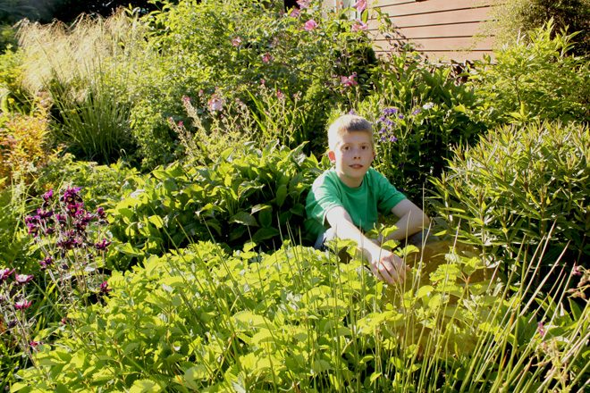 Sam in the Decker family garden in Western Washington. Photo: Sarah Decker
