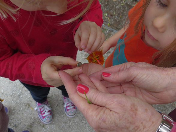 Curious and tender young gardeners examining a snail. Photo: Tami Desellier