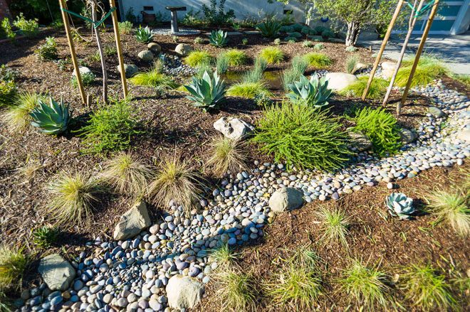 Plants, gravel, rocks, and grading in a newly installed rain garden landscape. Photo: Philip Otto Photography