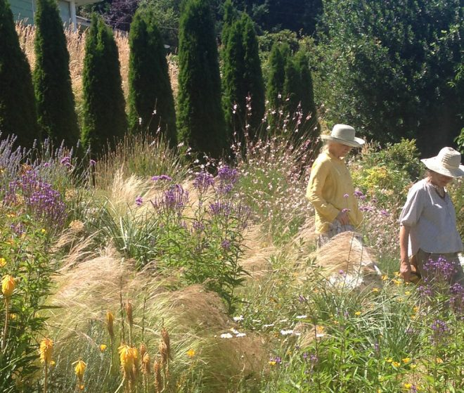 The Portland, Oregon garden of Bob Hyland and Andrew Beckman. Photo: Lorene Edwards Forkner