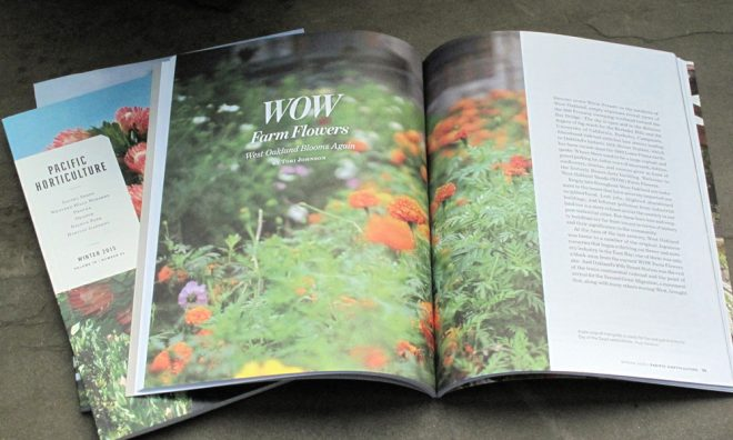 Pacific Horticulture is a quarterly publication of the Pacific Horticulture Society.