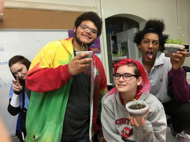 High school students in Christy Busch's biology classroom show (off) their phytoremediation projects.  Photo: The Street School, Tulsa, Oklahoma