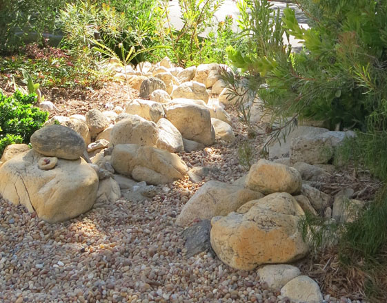 A detail of the dry streambed in the front garden. Photo: Cordellia Donnelly