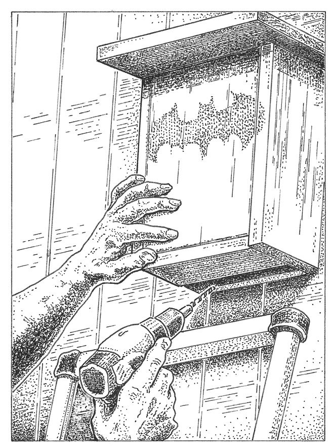 Installing a bat box in the garden provides habitat for bats, which in turn eat large numbers of mosquitoes and termites. Illustration: Craig Latker