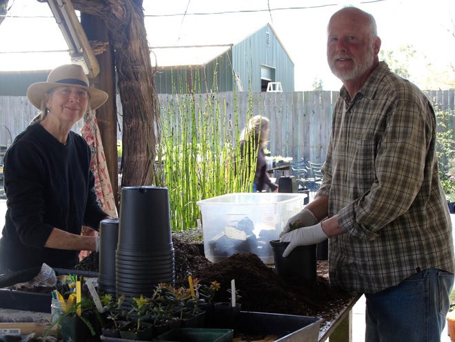 Sherrie Althouse and Phil Van Soelen, co-owners of California Flora Nursery, have been nurturing native plants and informing native plant gardeners for 35 years.  Photo: Jennifer Jewell