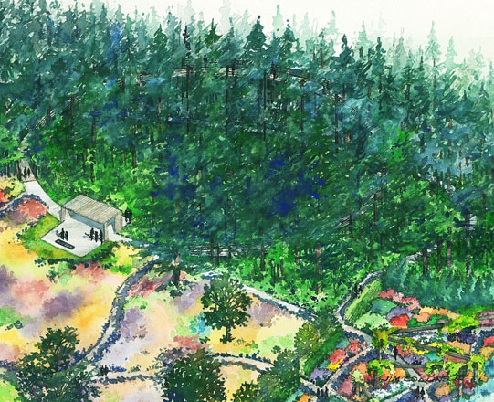 An elevated circular pathway 30 feet above the forest floor will offer visitors an intimate and novel perspective on the existing mature woodland.  Sketch: Land Morphology