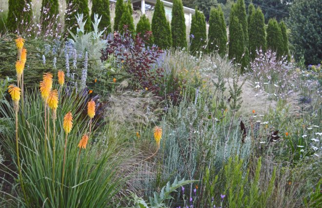 The Harborton Hill garden of Bob Hyland and Andrew Beckman. Photo: