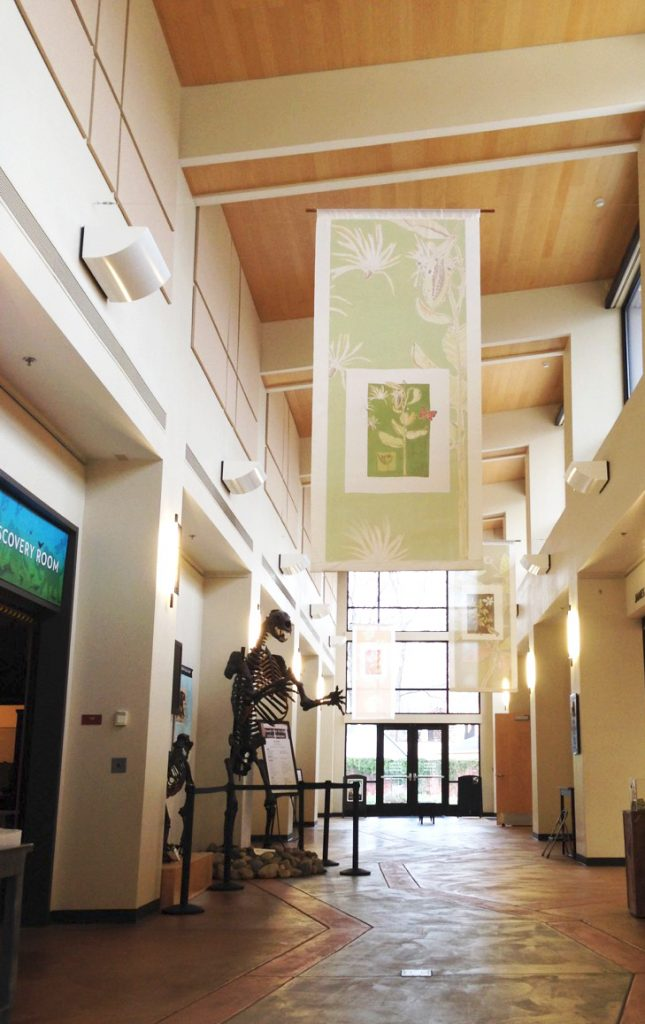 Large silk banners, pictured here at the Gateway Science museum in the spring of 2015, help to bring the art and nature of seed ecology to life. Photo: Jennifer Jewell