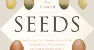 Book-Seed-feature