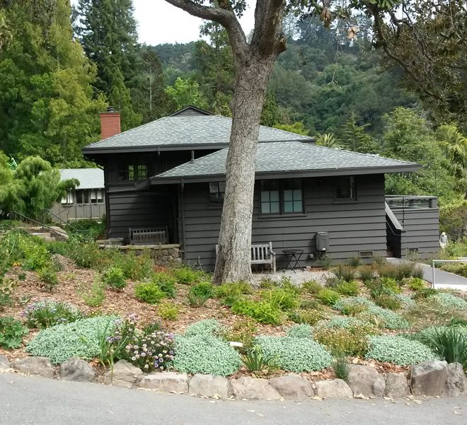 The new garden designed by Ron Lutsko surrounds Julia Morgan Hall in its new location in the University of California Botanical Garden at Berkeley. Photo: Earl Nickel