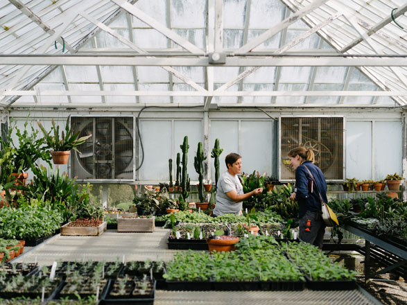 Kelly Osborne, lead greenhouse gardener at Filoli, and contributor Clare Al-Witri chat about propagation and color in the historic garden. Photo: Ryan Tuttle