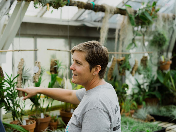 Kelly Osborne leads Filoli's greenhouse and propagation operation. Photo: Ryan Tuttle