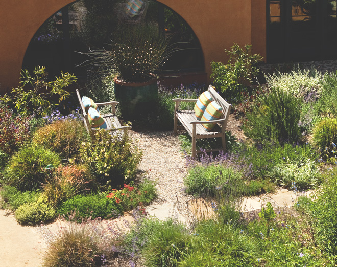 The courtyard at Victoria Garden Mews is filled with resilient, habitat-friendly plants. Comfortable benches encourage residents to linger. Photo: courtesy of Grace Design Associates, Inc.