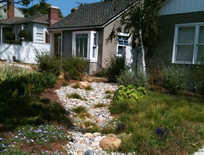 A climate-friendly front yard landscape designed designed by Paula Henson. Photo: Terrabella Water