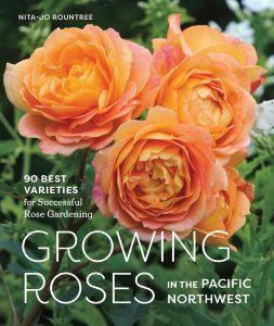 Growing-Roses