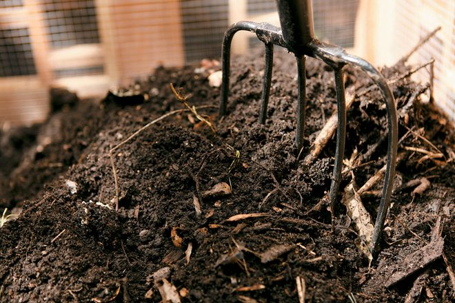 Compost turns yard waste and even kitchen scraps into a valuable soil amendment. Photo: Shutterstock