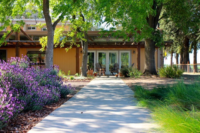 looking back toward the house and the shaded patio prairie junegrass koeleria macrantha on the - California Garden