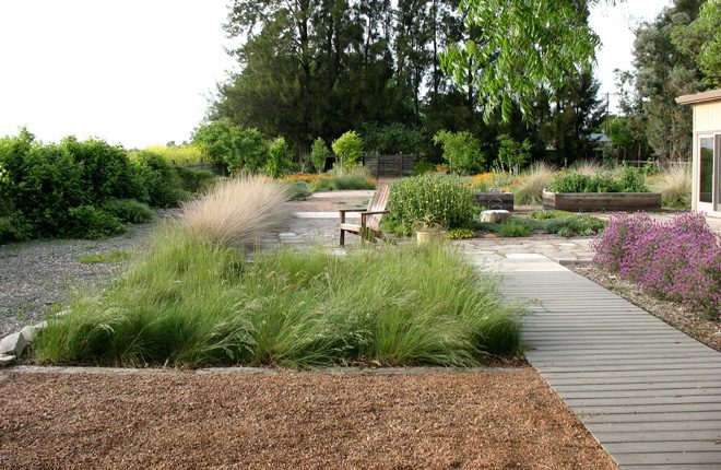 The boardwalk, Junegrass swale, pollinator garden, raised beds in the vegetable garden, and California native meadow in the distance. Photo: Ecological Landscape Design