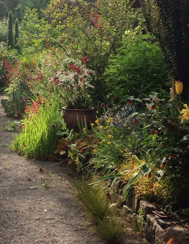 A bountiful border filled with perennials and shrubs at Bella Madrona.  Photo: Lorene Edwards Forkner