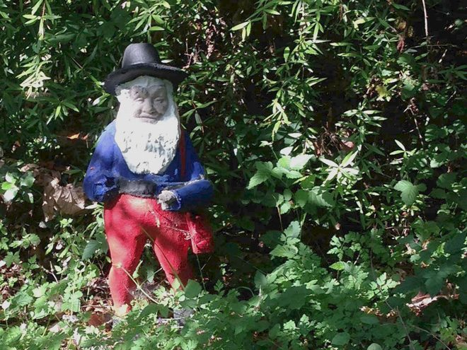 One of Bella Madrona's eccentric occupants in the woodland. Photo: Lorene Edwards Forkner